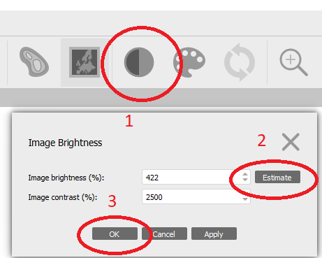 It is possible that your orthomosaic has a bad brightness just like ours in the previous picture. To fix this, click the Brightness icon, then click Estimate and click OK. The orthomosaic should be grayscaled in a normal range now.