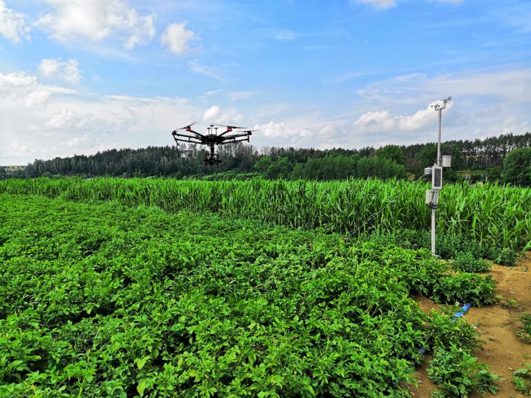 Figure 2.: DJI M600 with CWSI camera over one of the experimental fields